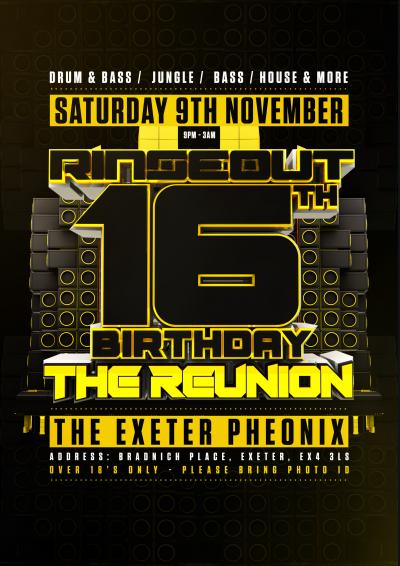 Rinseout 16th Birthday 'Reunion' Poster